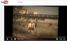Wideo Suchedniów