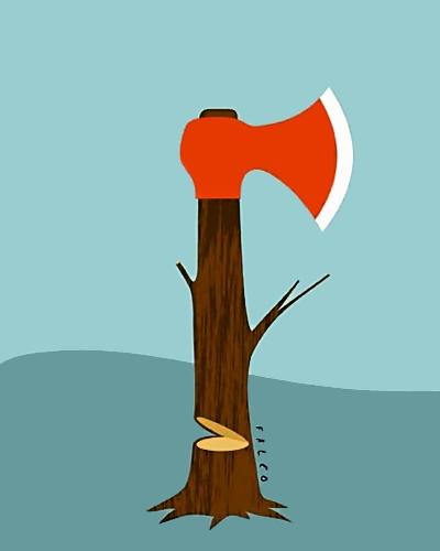 Økseskaft som næsten omhugget træ