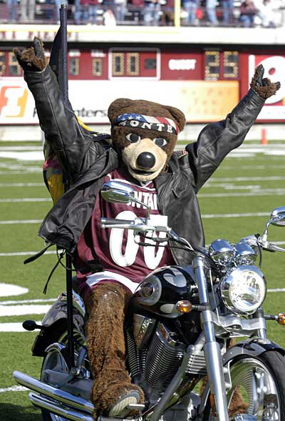 Monte grizzly bear mascot Montana