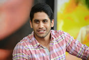 Naga Chaitanya photos-thumbnail-11
