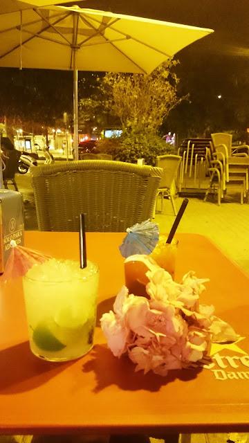 drink, drinki walencja, hiszpania allinclusive, drinki z palemnką, blog lifestyle, blogerka lifestylowa
