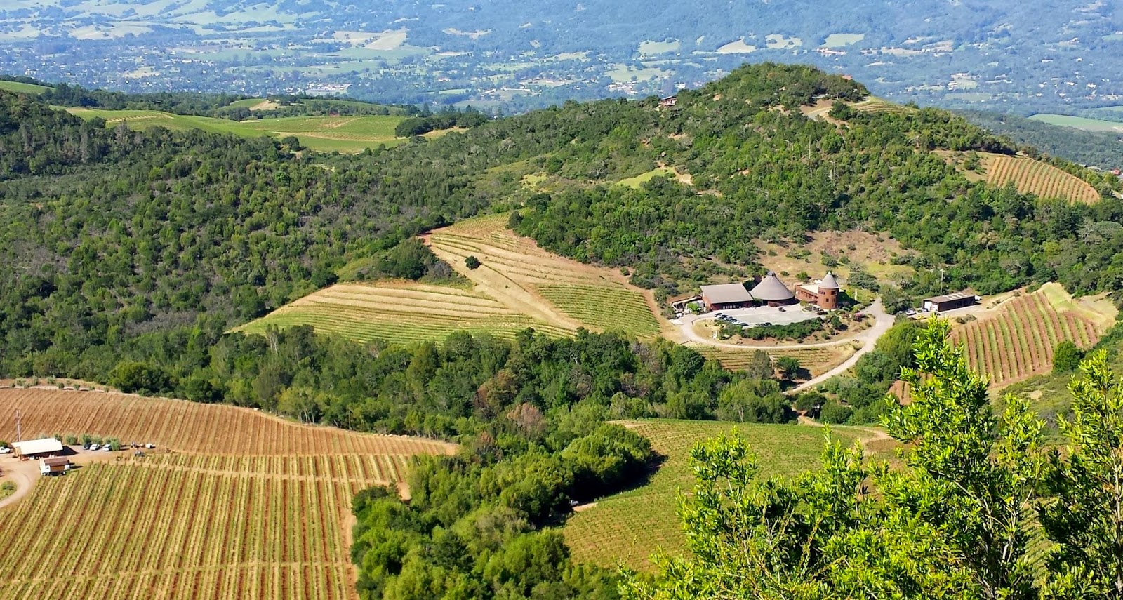 Repris Winery, Moon Mountain District AVA