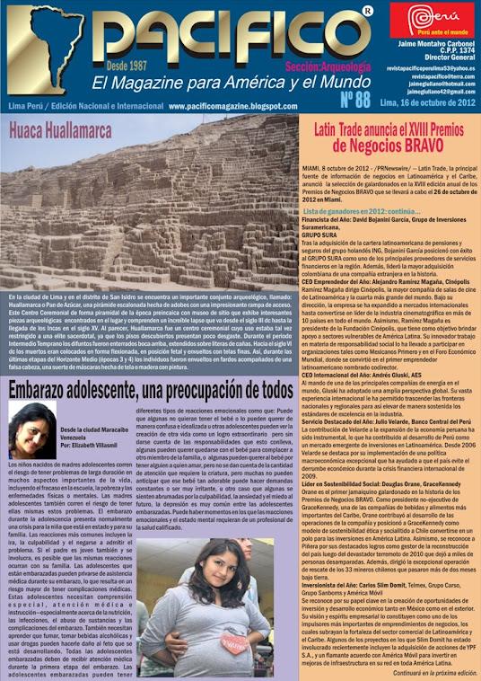 Revista Pacífico Nº 88 Arqueología