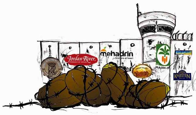 Maale Gamla Israel  city pictures gallery : Los dátiles del apartheid: boicot a los dátiles israelíes ...