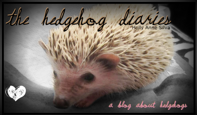 The Hedgehog Diaries