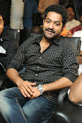 Jr NTR latest photos gallery-thumbnail-15