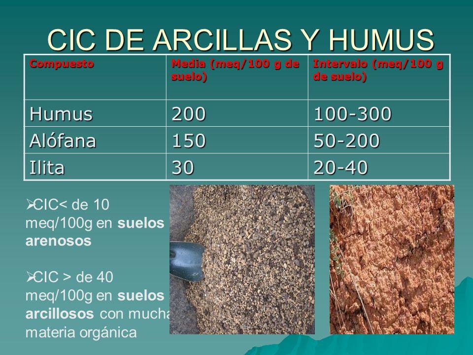 Fundamentos de la ciencia coloides org nico minerales del for Que elementos conforman el suelo