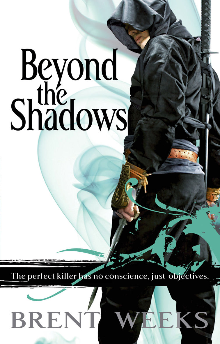 Beyond the Shadows cover