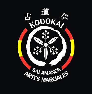 KODOKAI - Artes Marciales -