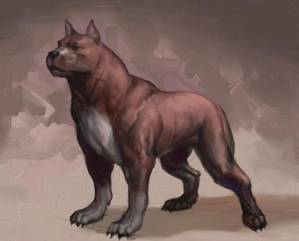 Rof greyhawk campaign the shapechangers chapter 5 - Dogs for small spaces concept ...
