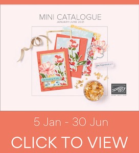 Jan - June Mini Catalogue
