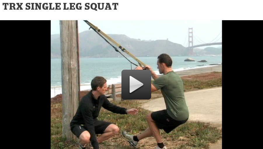 https://www.trxtraining.com/blog/trx-single-leg-squat#ooid=I1MzBnOpGNkDV7dKlaPrlFptZ7lQn6Pl