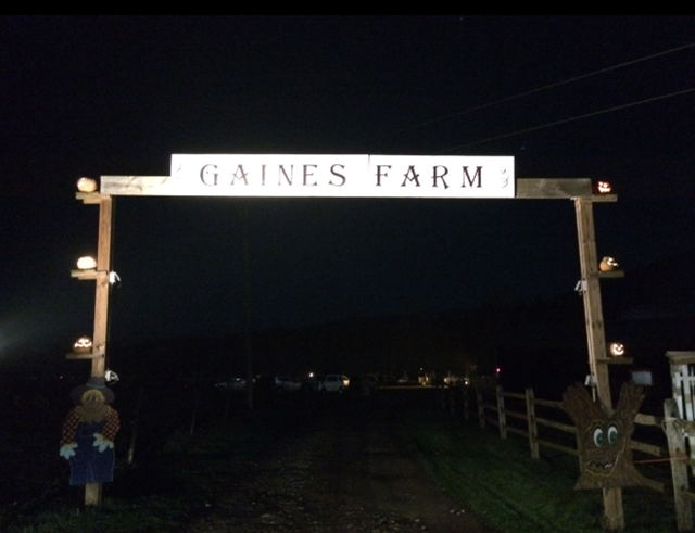 gaines farm guilford vermont