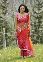 hot, sexy, Anushka, Latest, Photos, red saree,