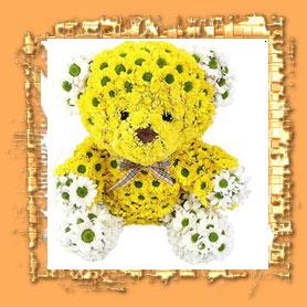 Ursinho feito com flores amarelas, margaridas, que tomam a forma de um urso de pelúcia. Um lindo presente