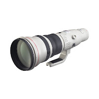 What Photography Gear to Buy with Your Tax Return Canon 800mm f5.6L USM Lens by Dakota Visions Photography LLC