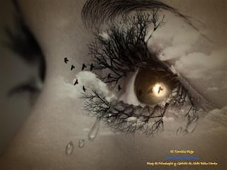 Psicologia, Gestalt, Emociones, Aida Bello Canto, Anestesia Emocional, Dependencia emocional