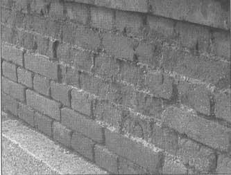 Muro que sirve de jardinera.