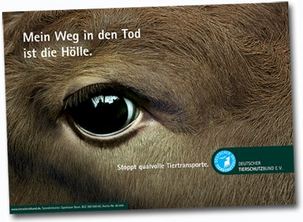 http://www.tierschutzbund.de/fileadmin/user_upload/Downloads/Plakate/Tiertransporte.pdf