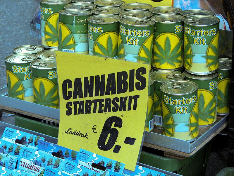 Cannabis starter kit Amsterdam seeds coffeeshops