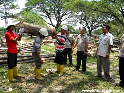 kayu TPK perhutani