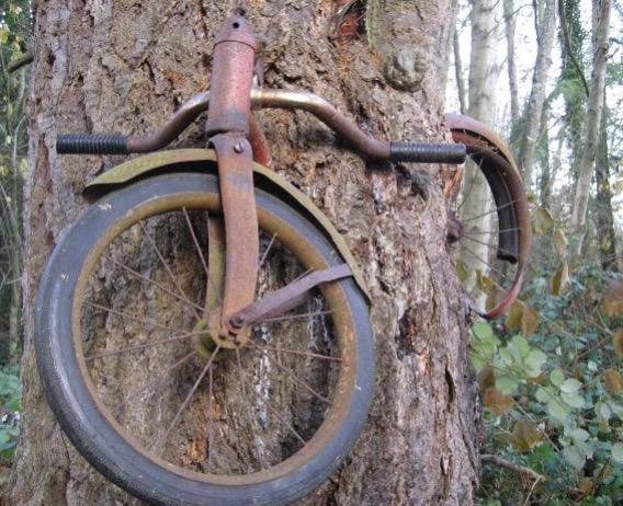 Misteri Basikal Hilang Setengah Abad Akhirnya Terbongkar