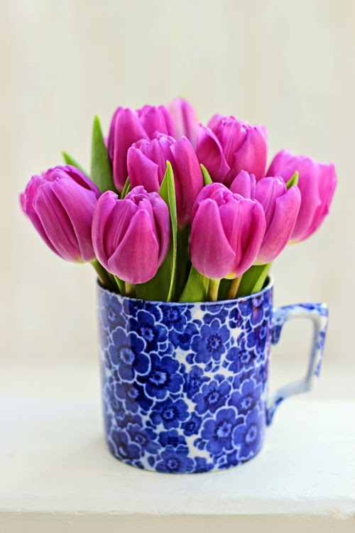 Pink Tulips in a Cup