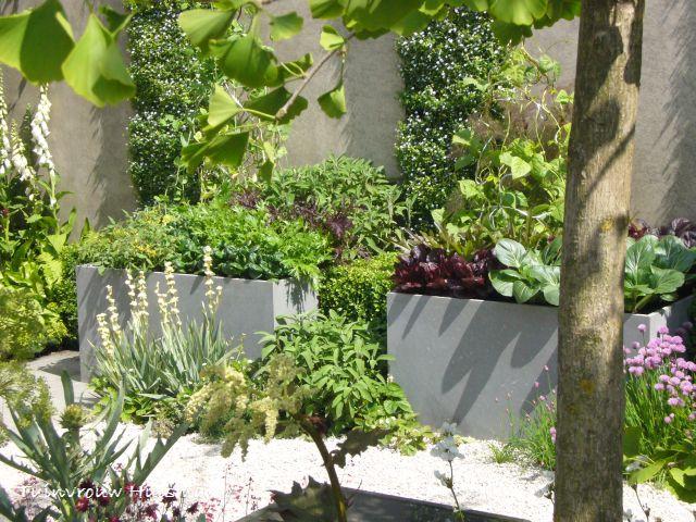 Tuindesign maart 2012 for Groenten tuin