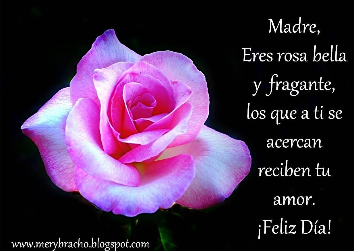 mi mamá es una bella flor, postal imágenes de flores para mamá, día Madre, eres rosa bella y fragante