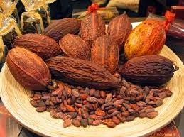 MESIN kakao