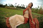 Tanvi vyas Latest Photos in Half Saree-thumbnail-4
