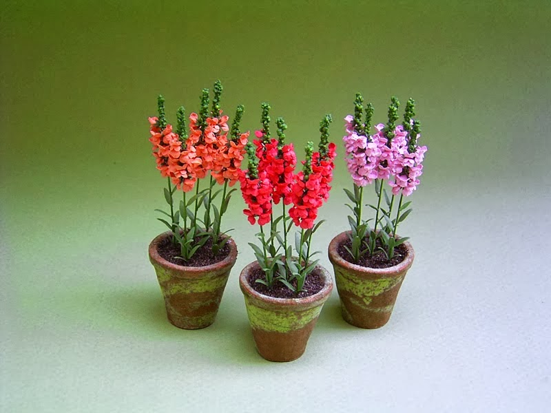 Miniature flowers and plants: Georgie Steeds