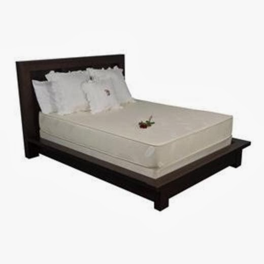 EverEden 9 inch Latex Mattress