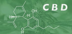 CBD and the Medicinal Debate