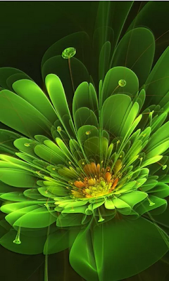Abstract Flowers HD Wallpaper