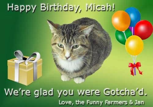 Micah_rszd.jpg