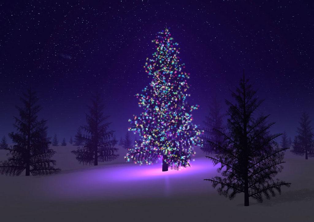 Arbol de navidad adornado en el bosque arbol de navidad for Imagenes de arbolitos de navidad adornados