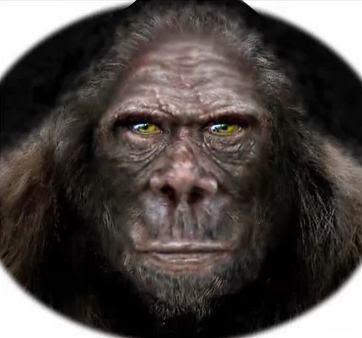 Blinking Bigfoot Face