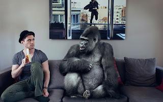 Chango y humano comparten la banana en el sofá