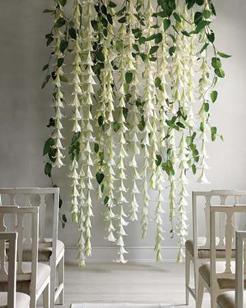 bliss wedding backdrops