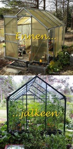Kasvihuoneen muodonmuutos / Greenhouse's makeover