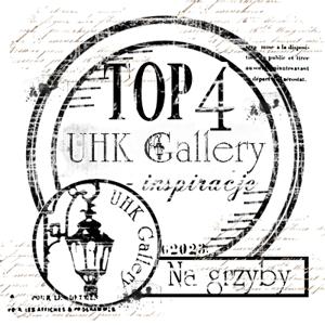 Wyróznienie UHK Gallery