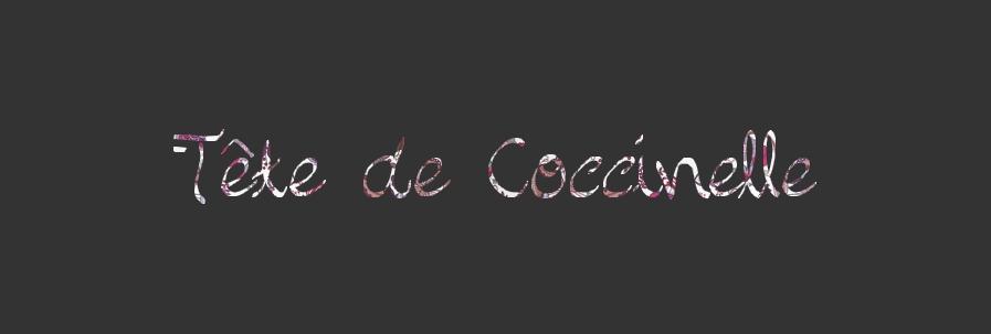 Tête de Coccinelle