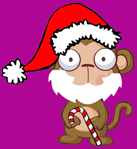 Santa Monkey!