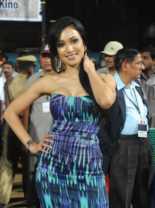 madhuri bhattacharya at ccl latest photos
