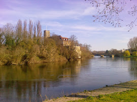 My River Neckar