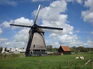 Looking for Windmills?