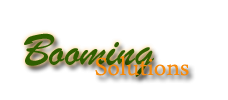 BOOMING SOLUTIONS ... e-payment, Website Management Solutions