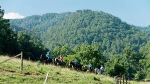 Horseback riding near Pigeon Forge