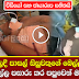 Schoolboy in Bulathsinhala falls from tree and Admitted to Hospital